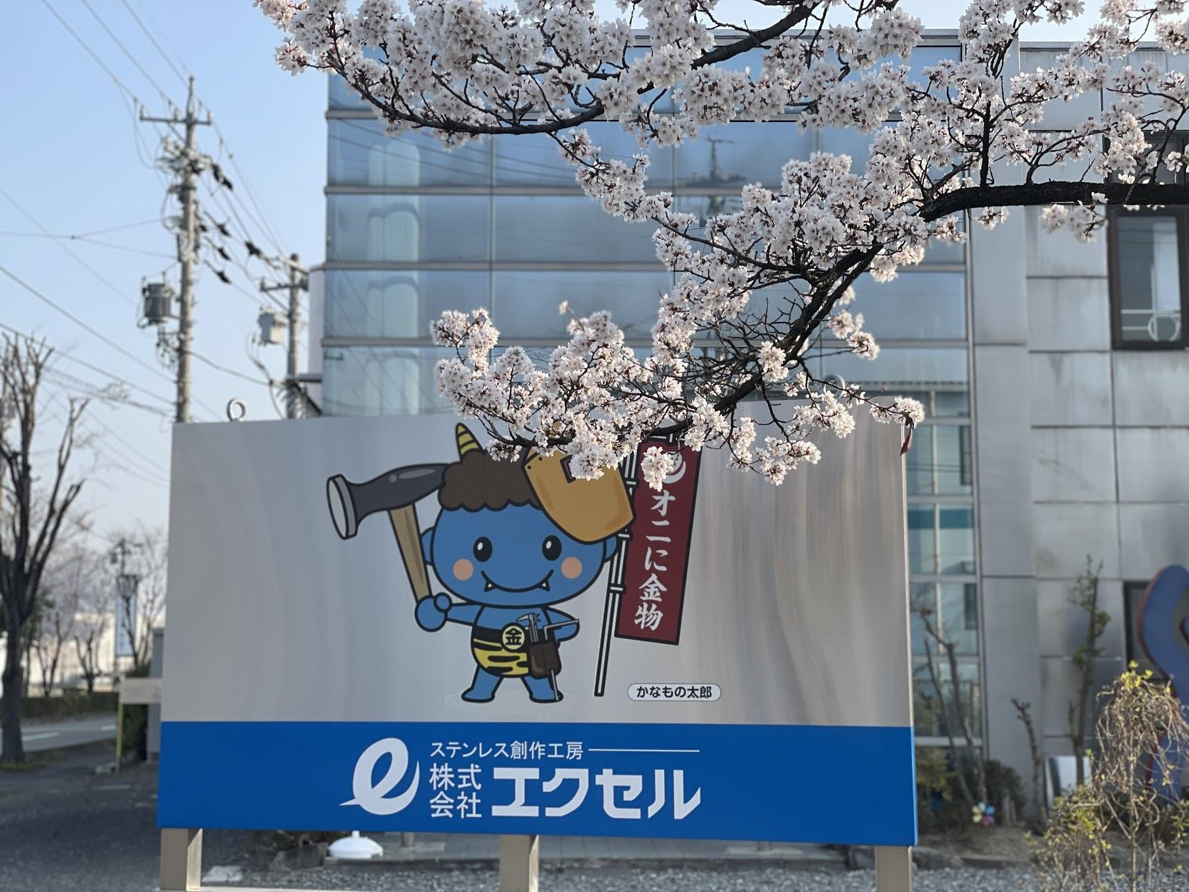 エクセル社内桜の木